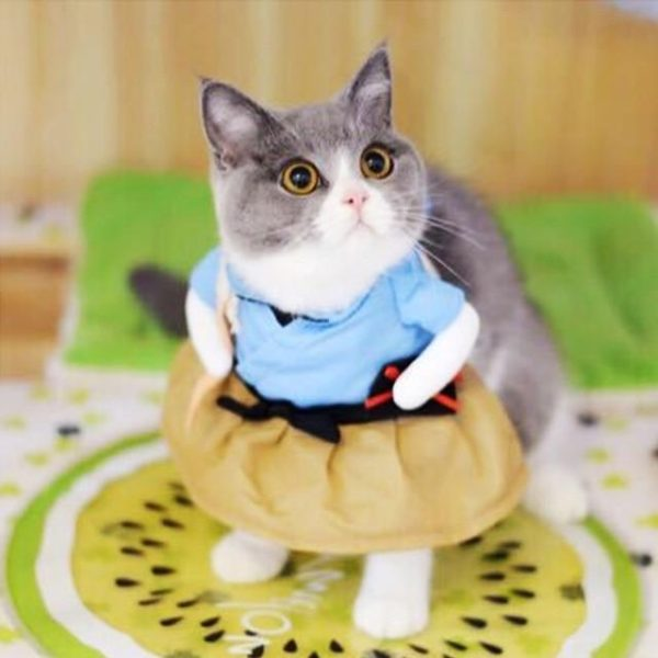 Funny Pet Cosplay Costumes - HahaGet